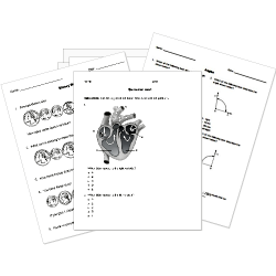 Help Teaching  Free Test Maker Printable