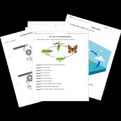 HD wallpapers elementary school science worksheets free